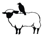 sheepdone.jpg